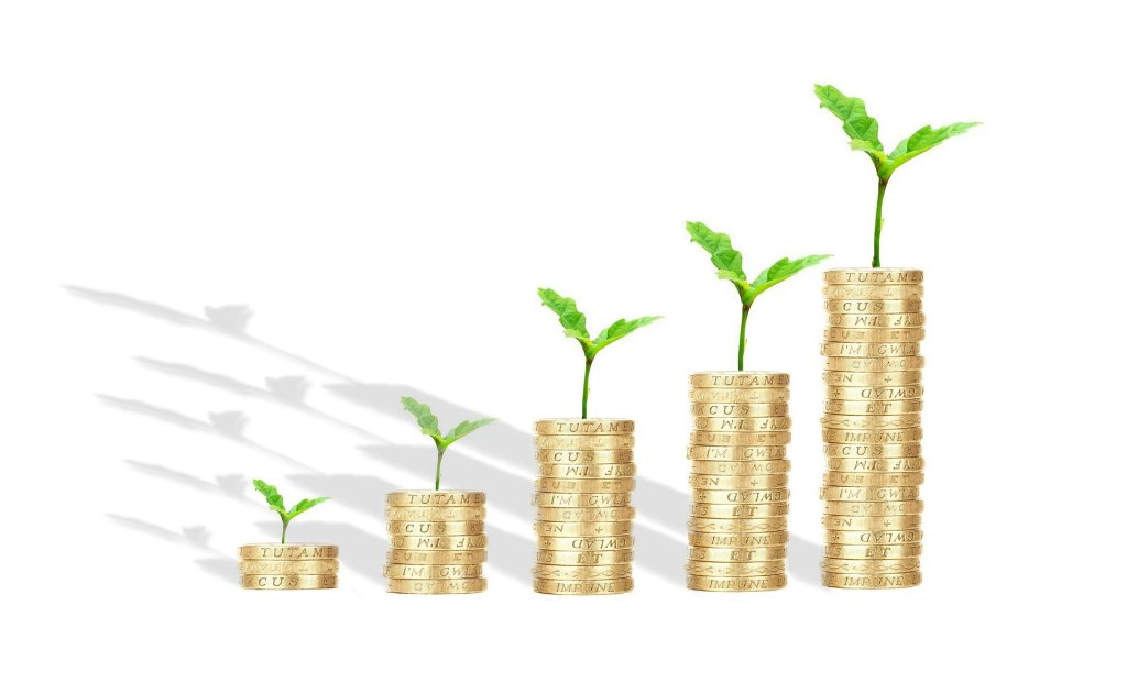 This image has an empty alt attribute; its file name is money-shoots-white-background.jpg